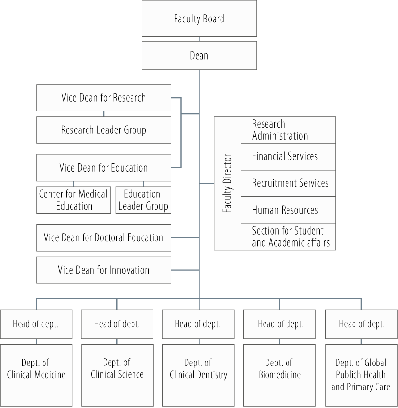 Organisational chart for the Faculty of Medicine