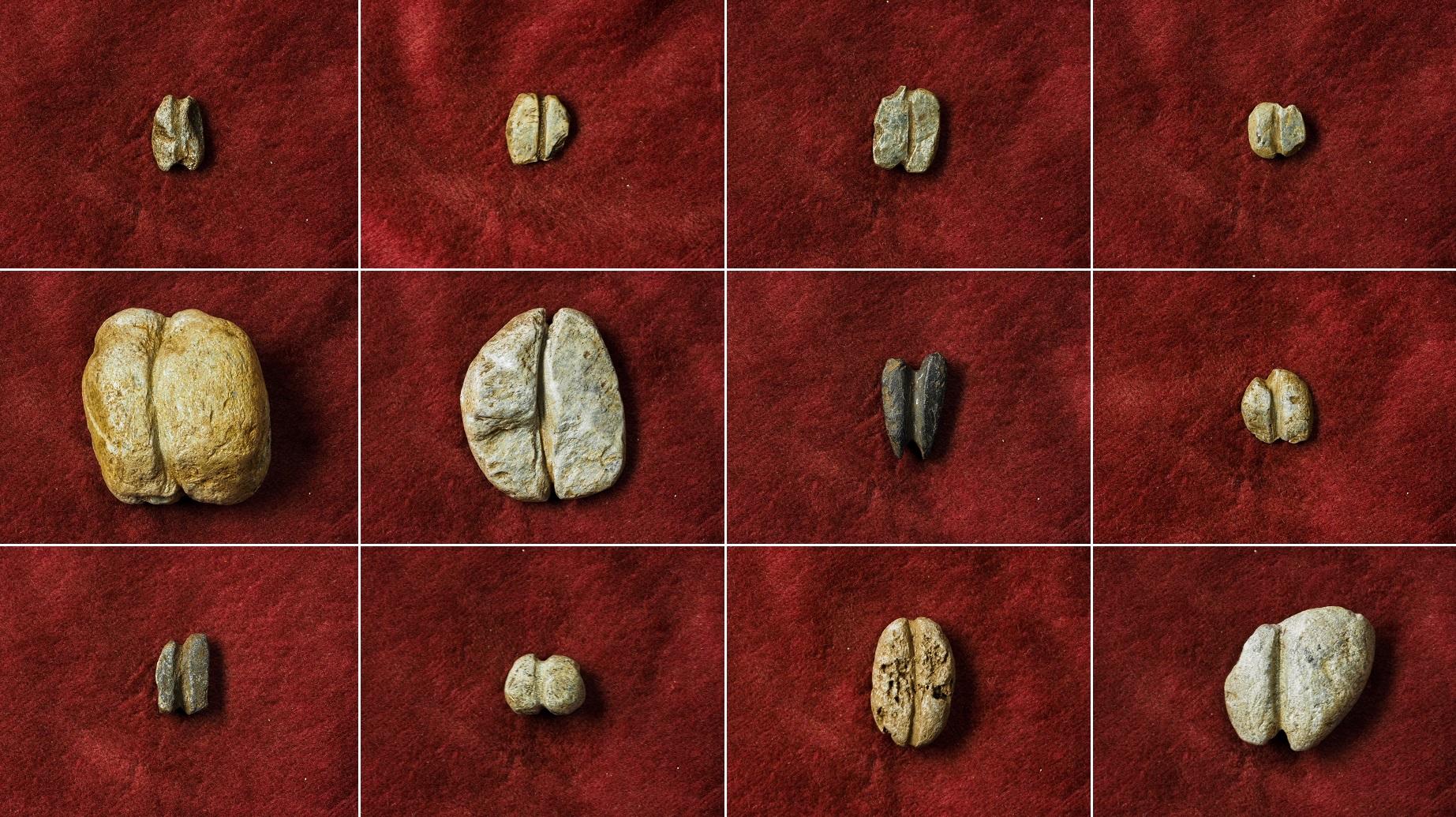 dating gjenstander og fossiler fredag kveld lysene stjerner dating