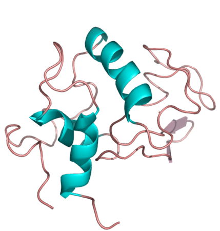 Schematic representation of the crystal structure of alfa-Lactalbumin