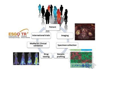 bergen_gynecologic_cancer_research_group_illustration