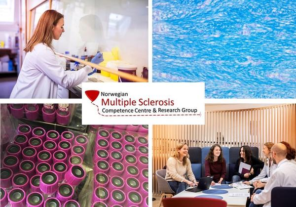 Collage MS-kompetansetjenesten