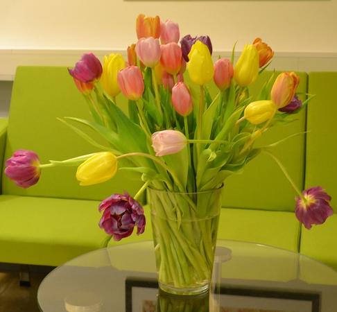 A vase of colorful tulips to decorate this web page.