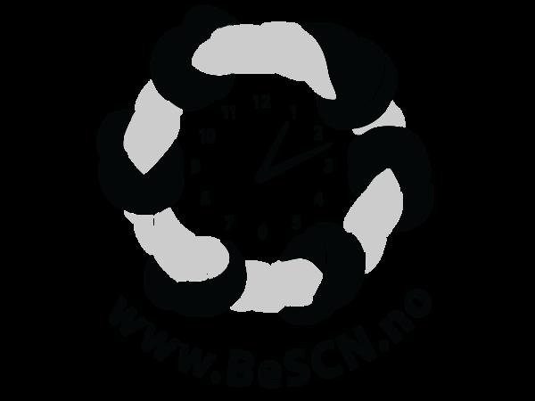 BeSCN logo