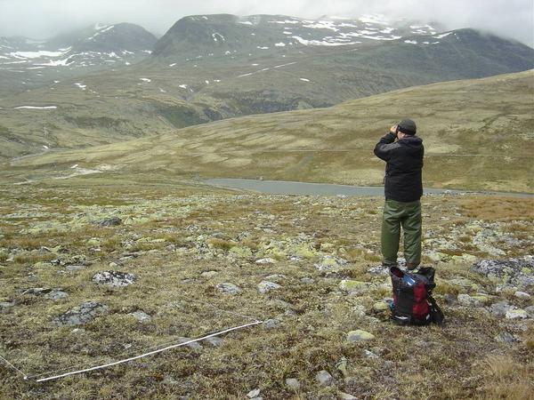 Landscape at Rondane with a sampling plot marked out and a person looking through binoculars