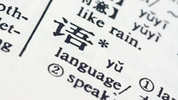 Språkvitenskap introbilde