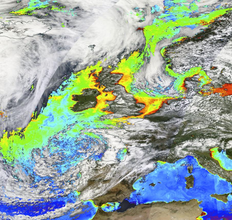Oversikt fra NASA som viser forekomsten av klorofyll i atmosfæren i juli måned. Jo varmere farge, jo mer klorofyll – og der det er klorofyll, kan det også være selen. (Illustrasjon: NASA Worldview)