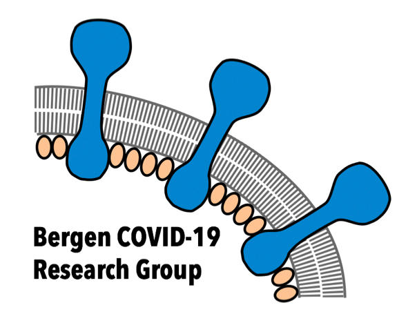 Bergen Covid-19 Research Group