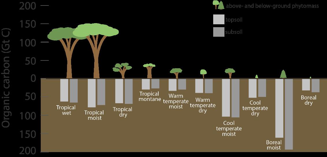 Figur fra USDA