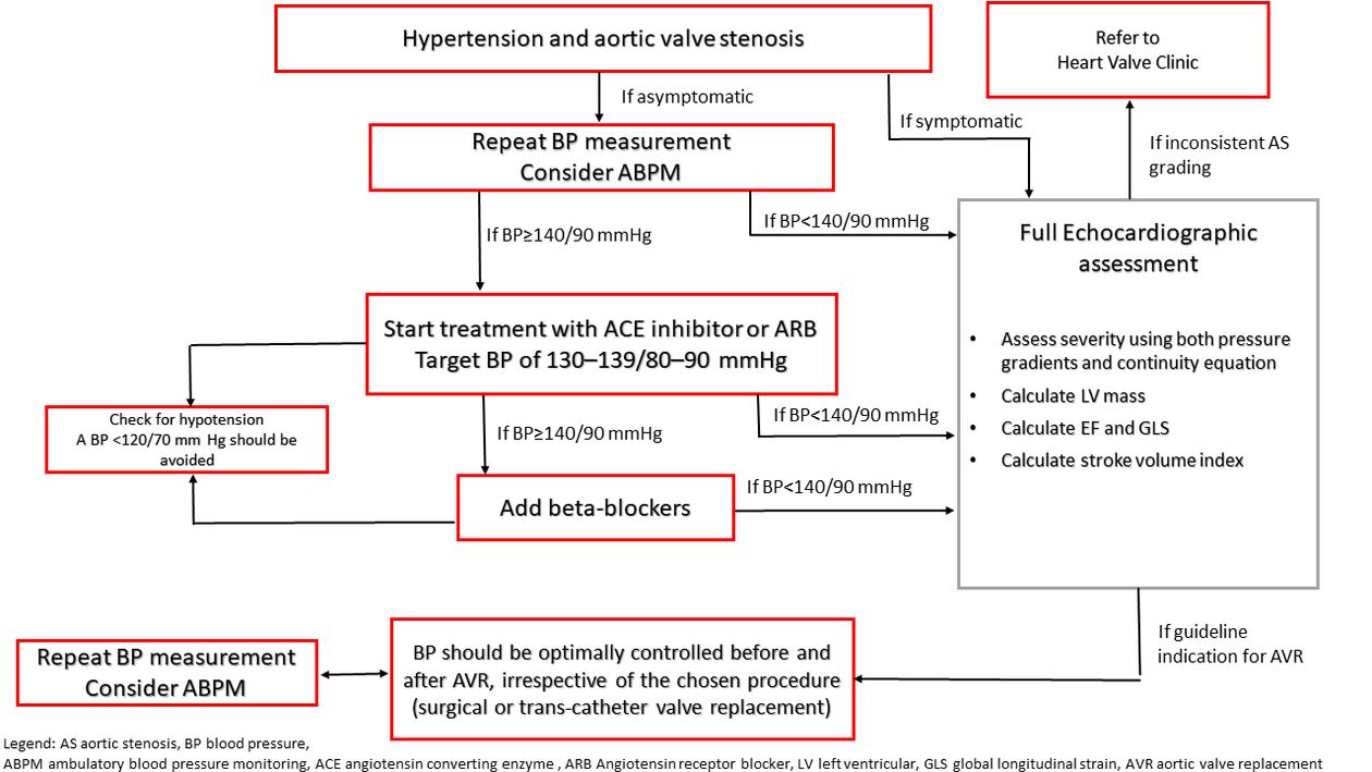 Flow chart behandling av hypertensjon ved aortastenose