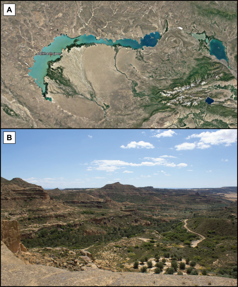 Figure A shows an example of a modern distributary fluvial system. Figure B shows an outcrop of the Huesca fluvial fan.