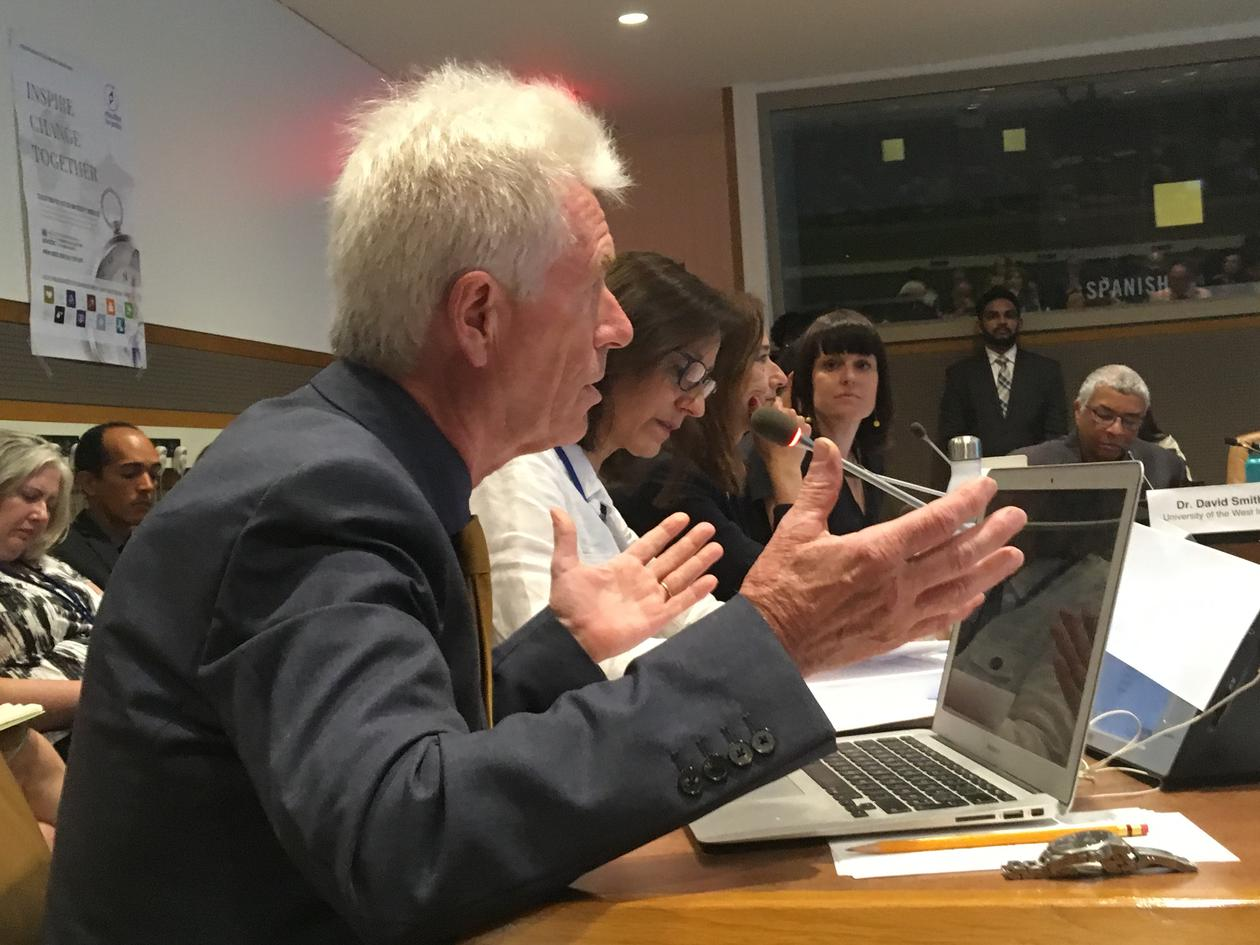 Dr. Tor Halvorsen from the University of Bergen gives a passionate speech at the High-level Political Forum in a workshop at the United Nations in July 2019.