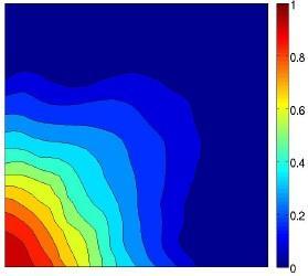 Quarter-ve-spot at dierent time steps in a dimensionless heterogeneous