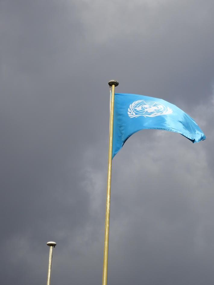 FN-flagget