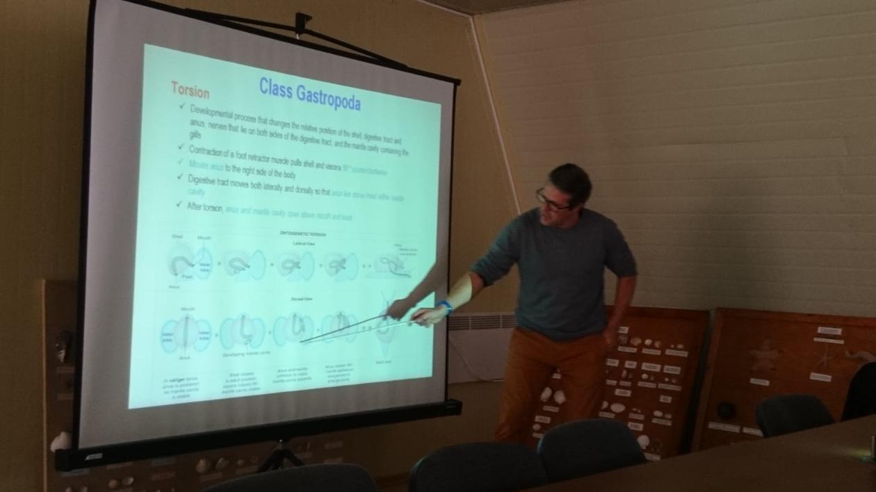 Manuel Malaquias lecturing on molluscs