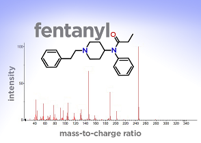 Mass spectrum of fentanyl