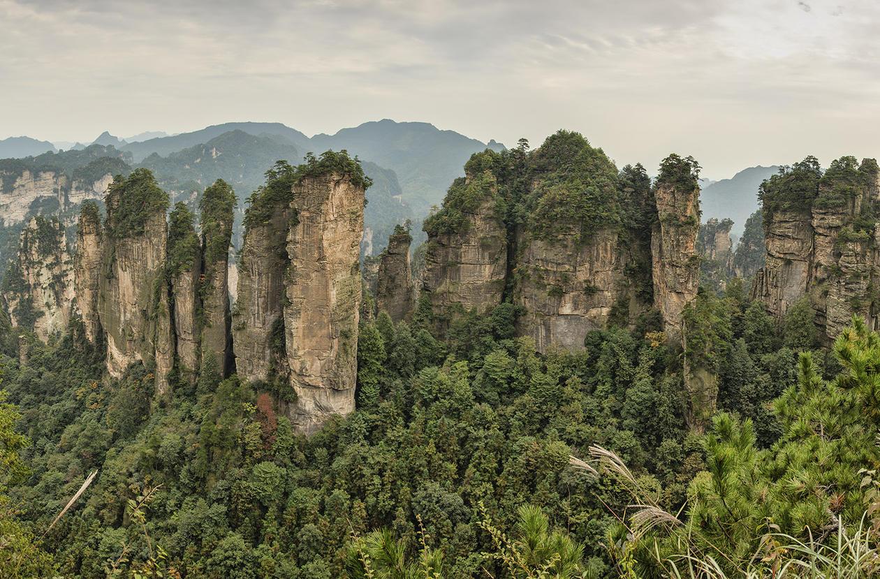Bilde av Five fingers peak. Quartzite sandstone Huangshizhai Zhangjiajie Wulingyuan Hunan, Kina