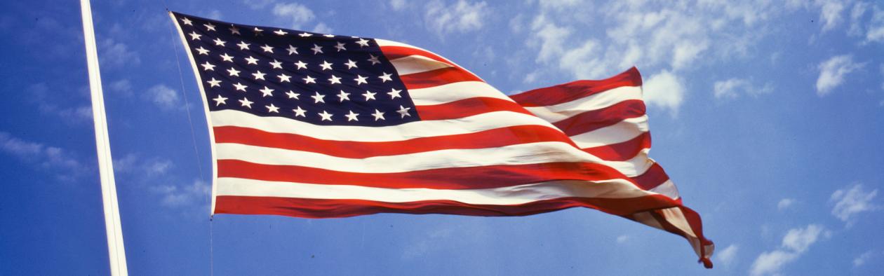 Amerikansk flagg