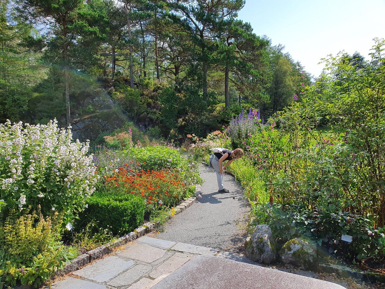 Blondehuset garden