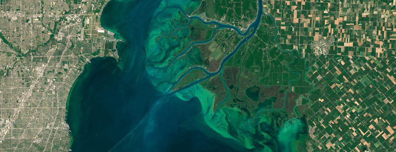 Satellite view of algae bloom
