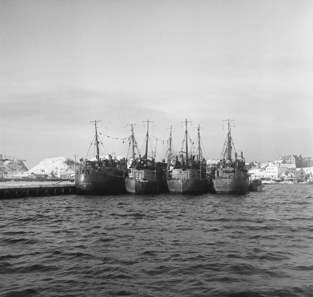 This picture from 1956 shows Russian trawlers seized by the Norwegian coast guard for poaching in Norwegian waters. A United Nations treaty has since contributed to reducing such tensions over international waters.