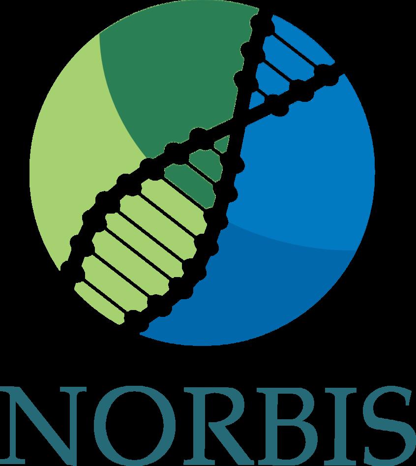 Norbis Logo