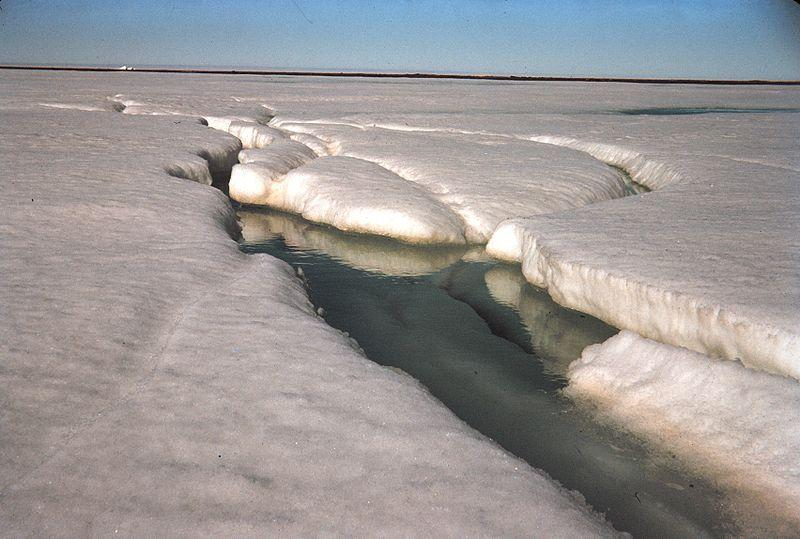 Ice melting Arctic