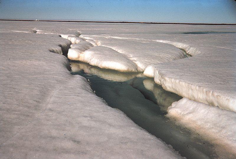 Ice melting Arctic