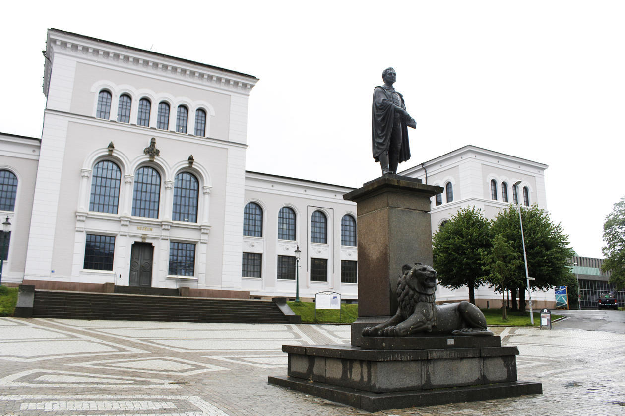 Universitetsmuseet