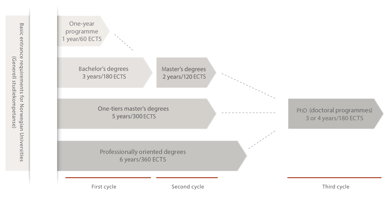 A chart that shows the academic degree system at UiB