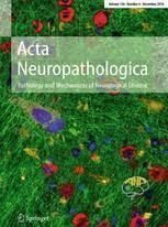 Acta Neuropathol.