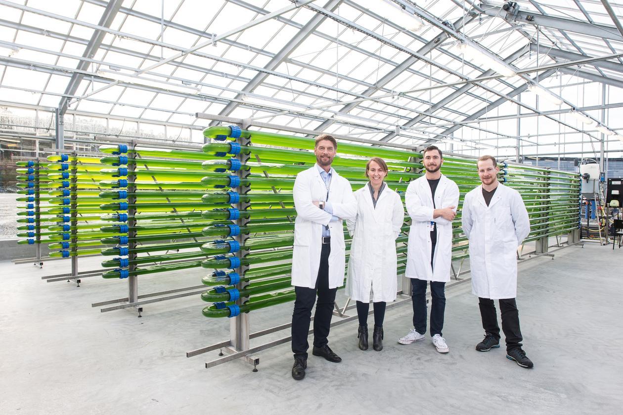 Det nye algepilotanlegget har to bygg, eit drivhus som produserer biomasse og eit driftsbygg med laboratorium og anna naudsynt prosessutstyr.
