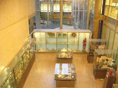 Anatomisk samling i fugleperspektiv