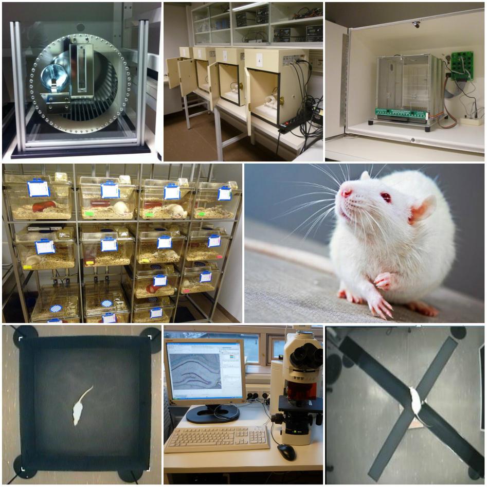 Adferdstesting og telemetrisk registrering på dyr