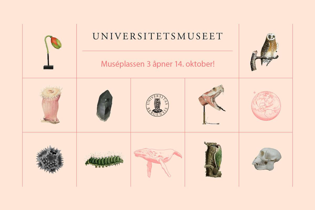 Universitetsmuseet i Bergen, åpning, 14. oktober