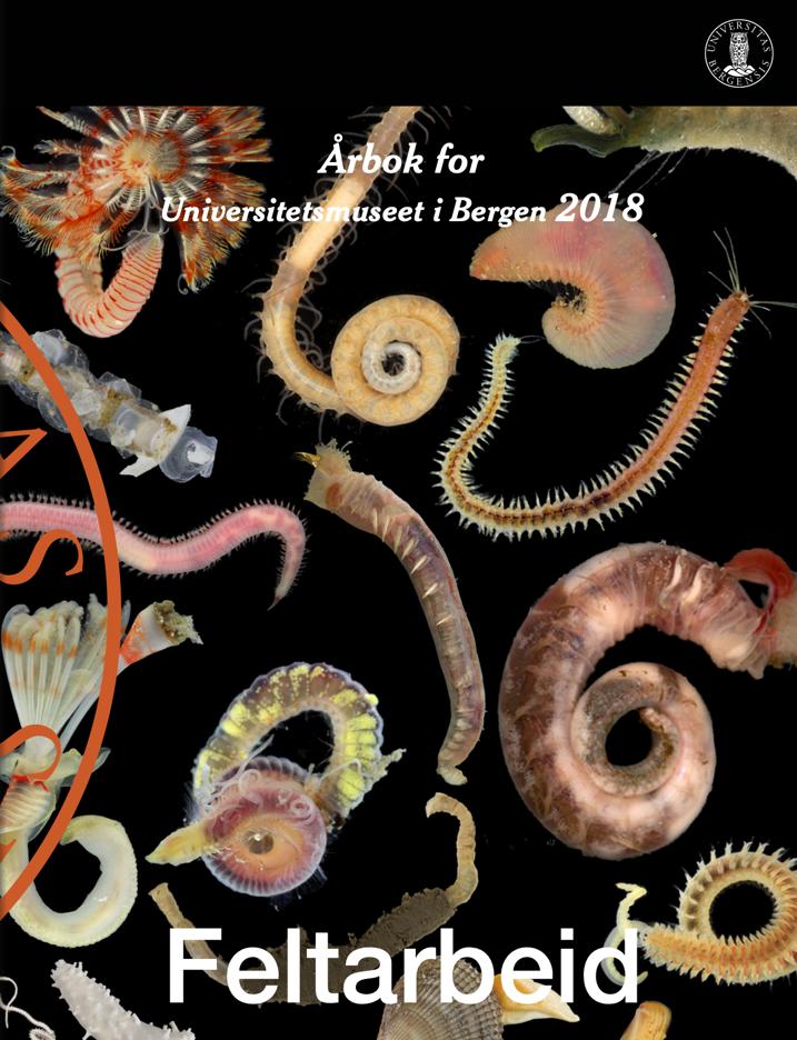 Årbok omslag 2018 feltarbeid