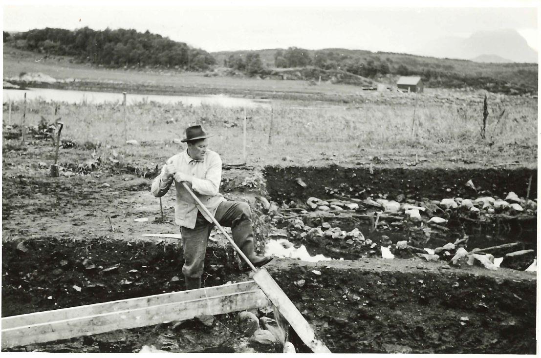 Asbjørn Herteig 1954