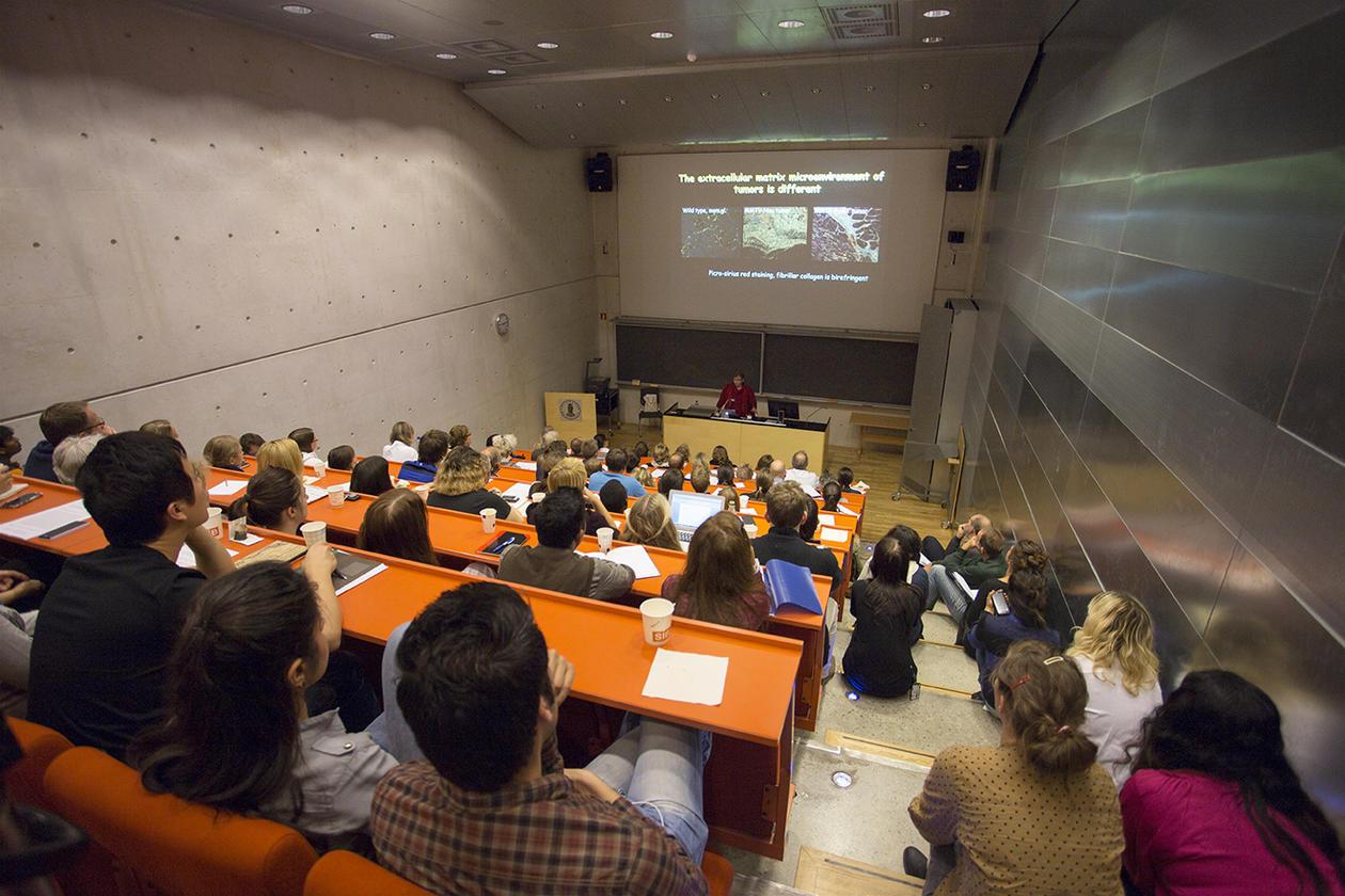 Lecture in Auditorium 4