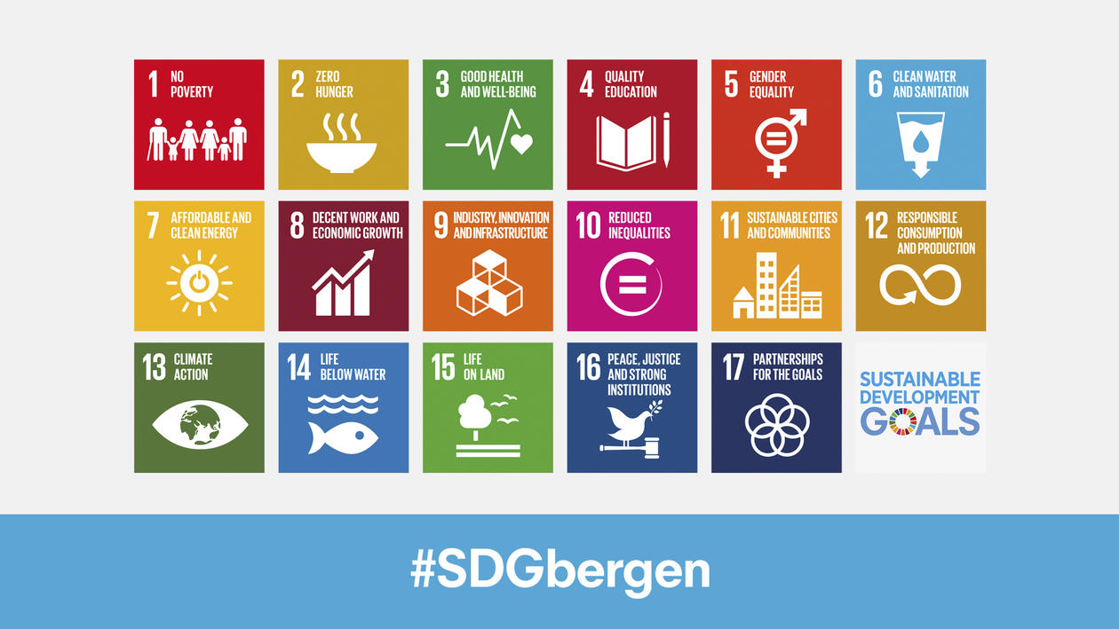 Background profile used in University Aula in Bergen for the 2018 SDG Conference Bergen.