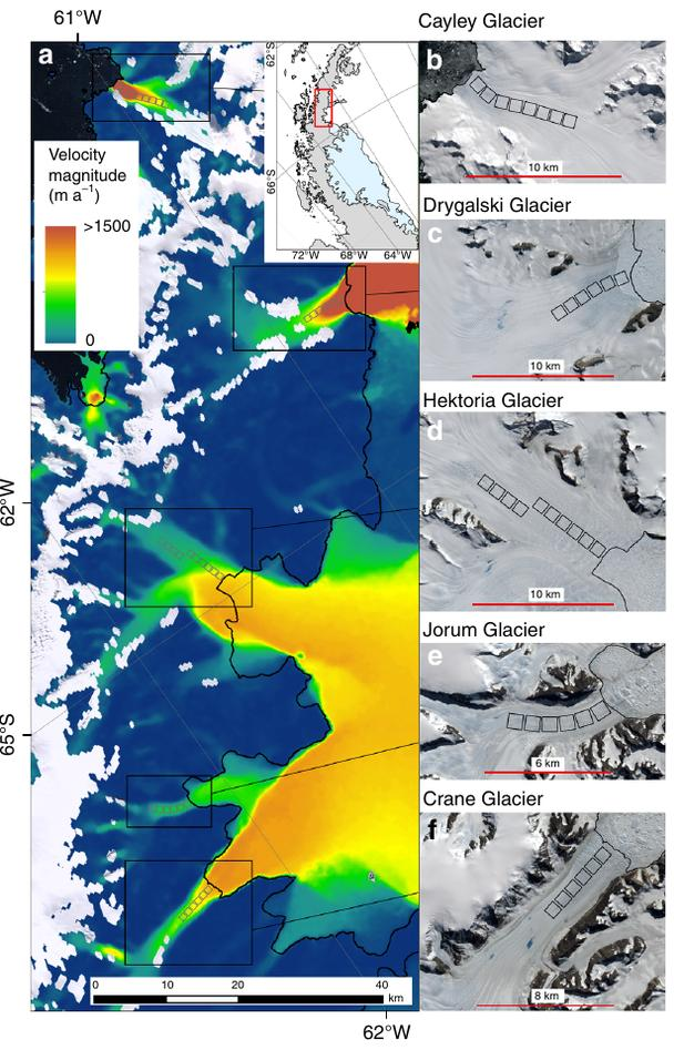 Velocities (left) and sattelite pictures (right) of glaciers experiencing spring speed-ups on The Antarctic peninsula