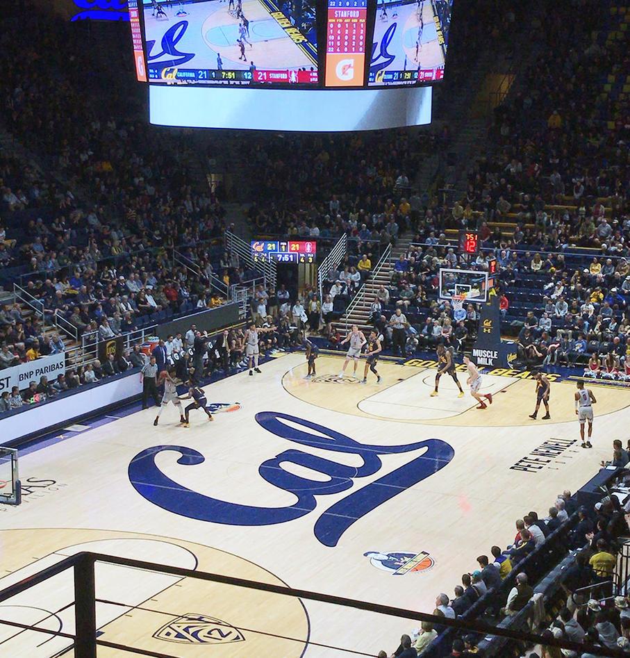 Basketbane