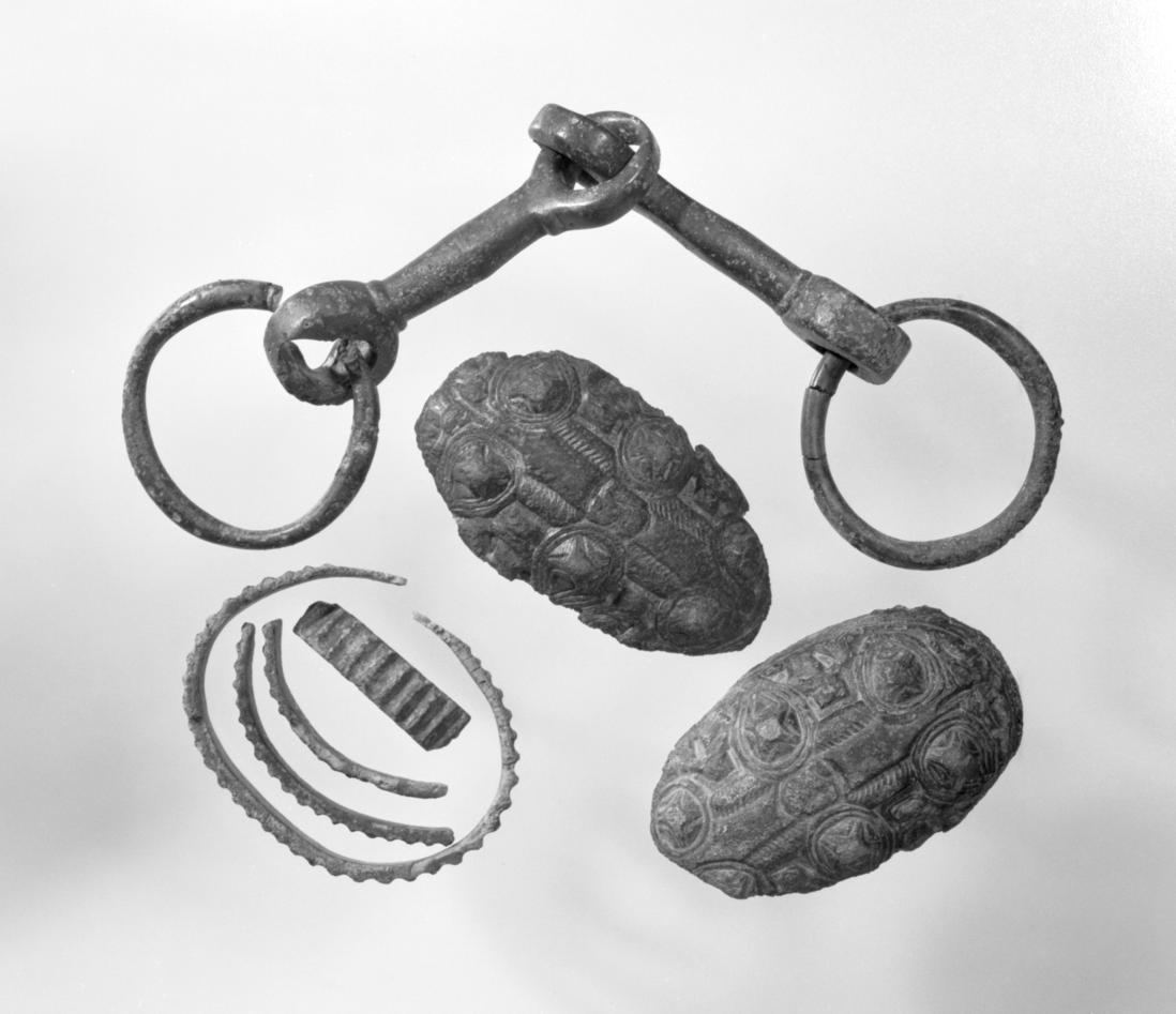 Ringnål, to ovale spenner, en armring og et bissel funnet på Nes , Sogndal