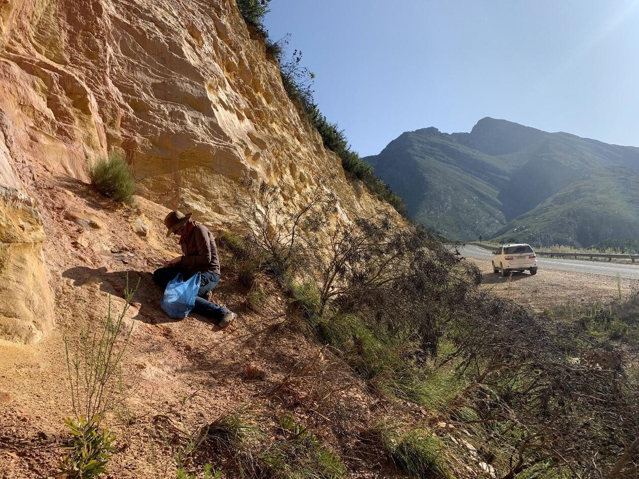 E. Velliky collecting ochre at Garcia Pass, ca. 50 km north of Blombos Cave in South Africa, March 2020.