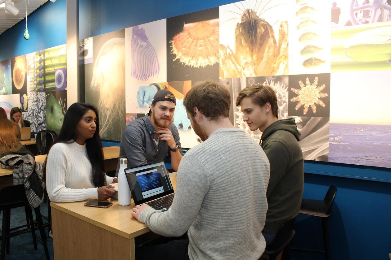 fire studenter rundt et bord
