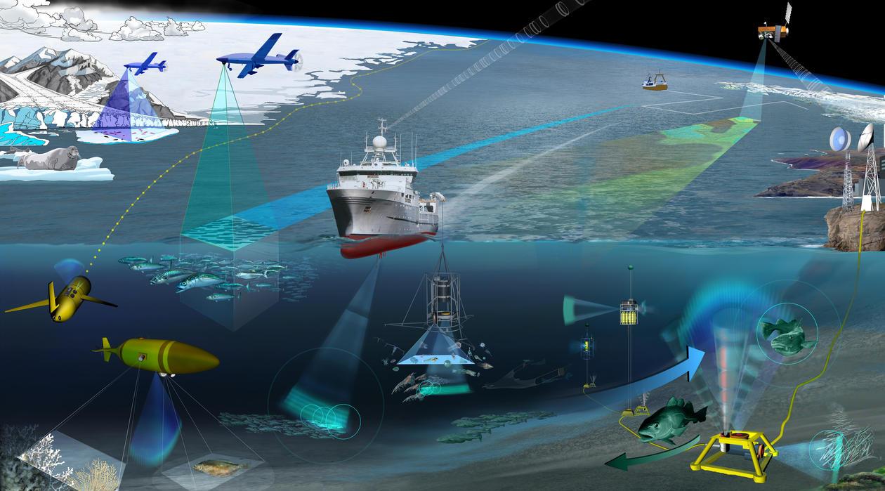 Havteknologi