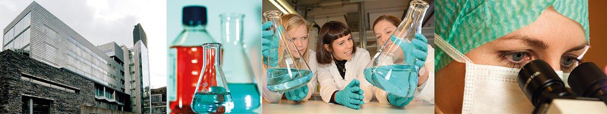 Samlet bilde av laboratorieaktivitet