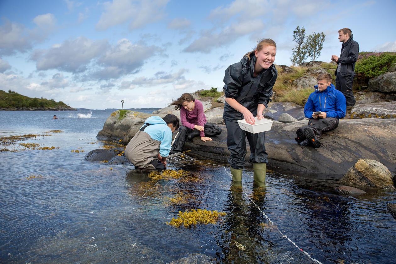 Biologistudenter fra bioCEED-prosjektet på Lygra, nord for Bergen.