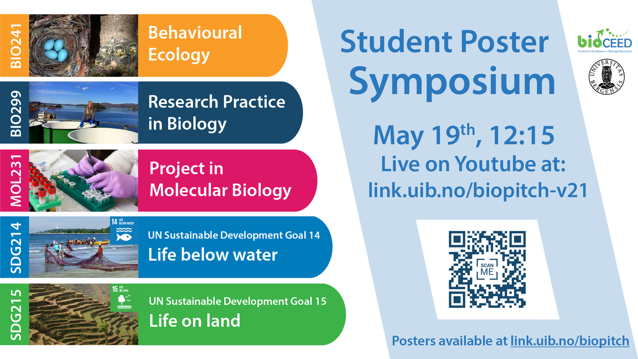 Poster image regarding the symposium