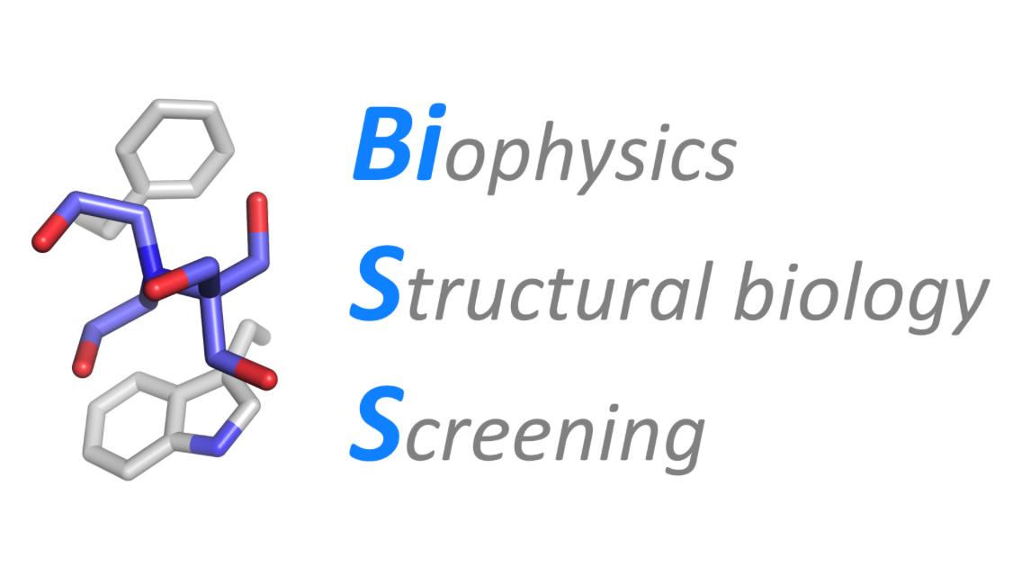 biss-logo.png