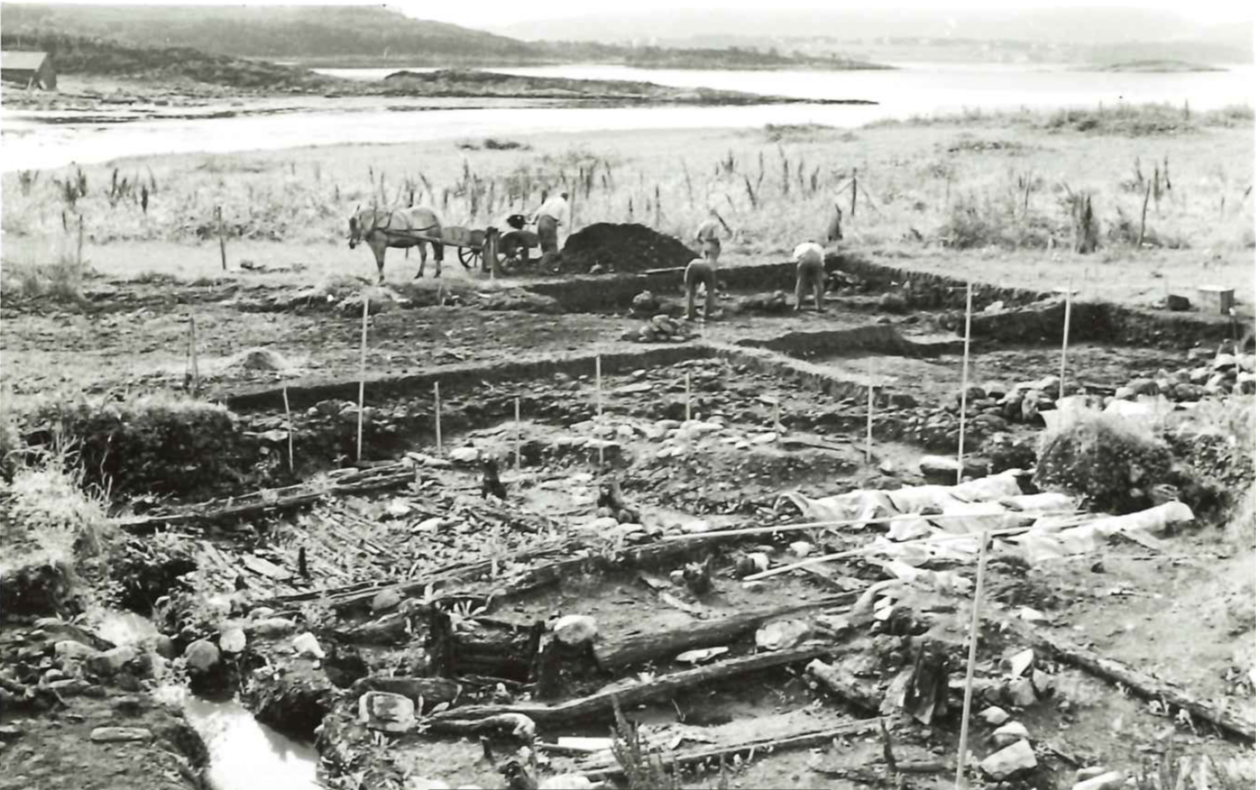 The Borgund Excavation 1954