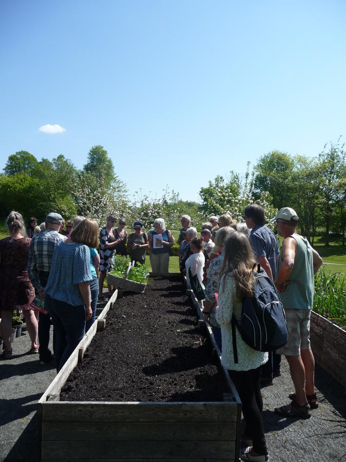 Grønsaksdyrking i Botanisk hage